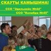 Скауты города Камышина и их друзья /ВООС
