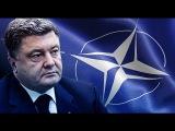 Что из себя представляет НАТО? Территория заблуждений 21.05.2016