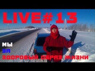 LIVE #13 На лыжах в зимнем лесу  Мы за здоровый образ жизни.