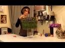 Уроки флористики Славы Роска. Виктория Орлова. Новогодний букет на каркасе из сосновых иголок.