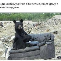 Анкета Дмитрий Савельев