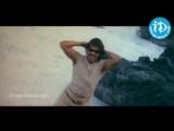 Chandramukhi Song - Super Movie - Nagarjuna Akkineni - Ayesha Takia - Anushka Shetty