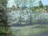 Анна Герман...цветут сады...