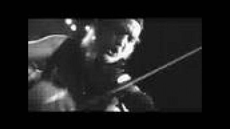 GOGOL BORDELLO MALA VIDA LIVE by Vince Tocce
