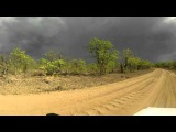 SOUTH AFRICA gamedrive with go pro around letaba, kruger park (hd-video)
