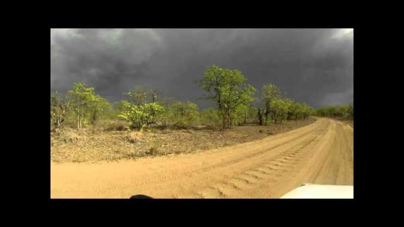 SOUTH AFRICA gamedrive with go pro around letaba, kruger park (hd-video) » Freewka.com - Смотреть онлайн в хорощем качестве