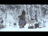 Классная реклама с медведем в главной роли