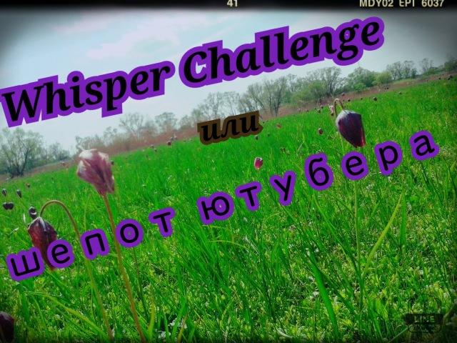 Whisper Challenge || ШЁПОТ ЮТУБЕРА)
