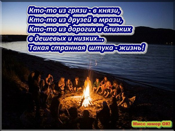 Фото 350113384