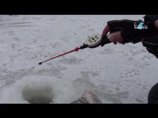 Зимняя рыбалка на реке Ветлуге на мормышки и балансиры. Выезд c Бесединым А. в район д. Югары с целью поймать густеру и судака