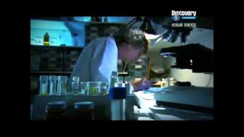 Discovery. Женщины-убийцы.Медицина во зло (vk.com/girls_gangsters)