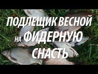 Фидерная ловля подлещика. Рыбалка в Волгограде весной