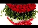 «мои фото» под музыку Аллигатор - Поздравление с 8 марта (длин Калым).mp3. Picrolla