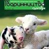 """Журнал """"Тваринництво сьогодні"""""""