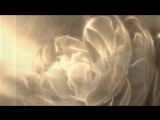 A Beautiful Day - Schiller (feat. Isgaard)
