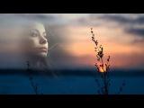 #Полынь трава# Леонсия Эрденко#
