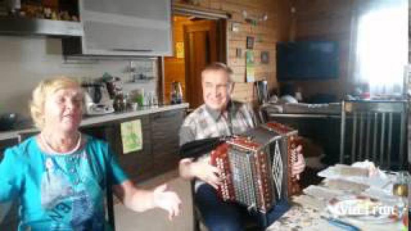 Коробейники (Ой, полным полна моя коробушка...) / виртуоз гармонист Наталенко Владимир Павлович