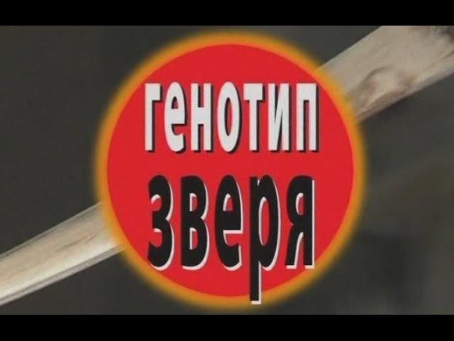 Криминальная Россия. Генотип зверя