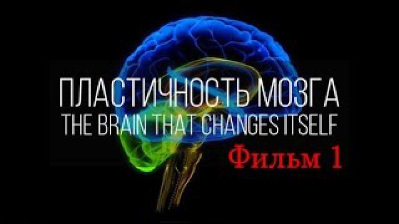 Мозг изменяющий себя сам (Нейропластичность Мозга) / фильм 1