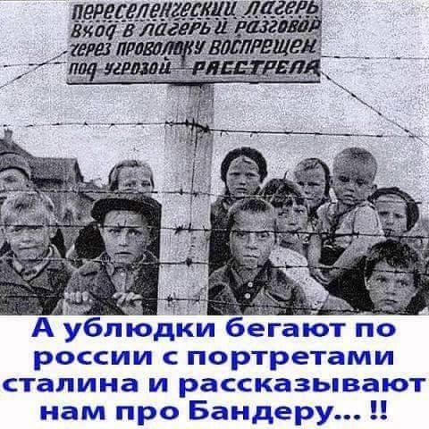 На приговор Сенцову и Кольченко подана кассационная жалоба, - адвокат - Цензор.НЕТ 3909