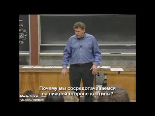 MIT Lecture Виды организмов, состав клетки часть 1