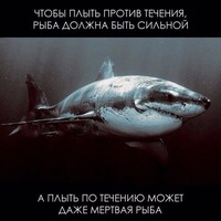Шакалов Никита