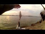 Рыбалка на фидер Первый шлюз в декабре