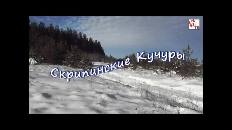 Правдивые истории Дмитрия Илюшина
