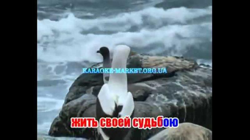 Корабль Казино Спб