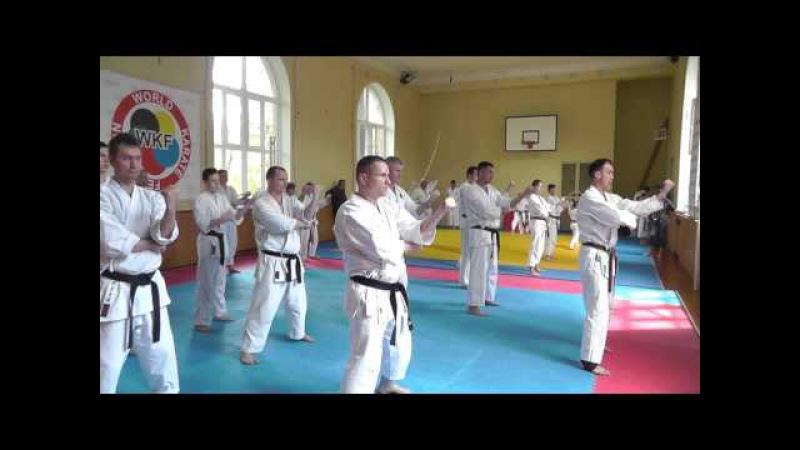 Семинар по Каратэномичи Запорожье 15 05 2016 Часть 2 Karatenomichi seminar part2