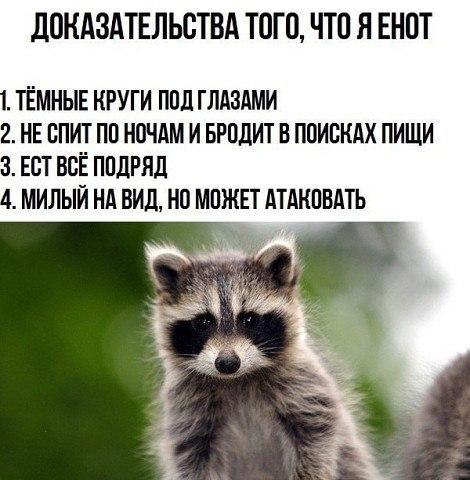QPlhYRhzMzQ - Сыночек, почему у тебя сегодня такая плохая оценка по русскому?!