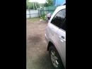 НТВшники снимают, как собака нападает на людей