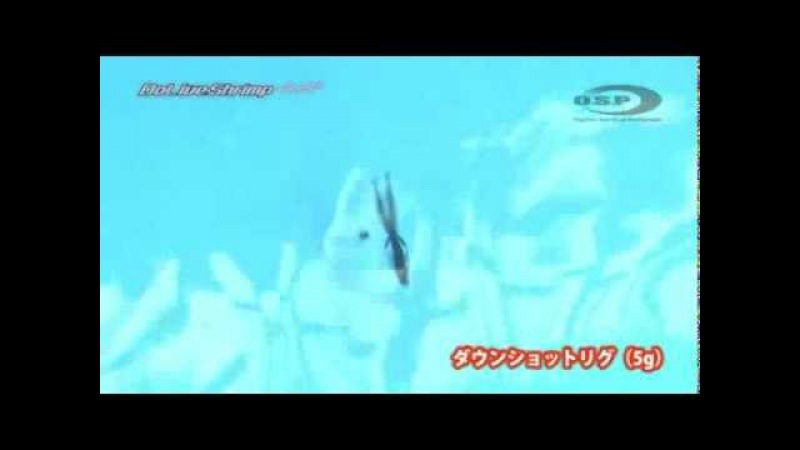 O S P Dolive Shrimp