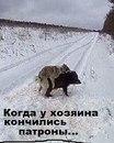 Евгений Воробьев фото #30