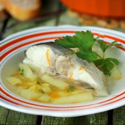 Рецепт уха с толстолобика
