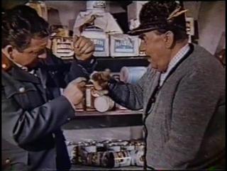 Двенадцать девушек и один мужчина (Австрия, 1959) комедия, советский дубляж с участием Георгия Вицина
