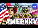 За счастьем в Америку! Познавательное ТВ, Нидас Ундровинас
