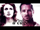 ► Peter Lydia | My Body is a Cage
