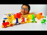 Çocuk için eğitici video. Mevsimleri, renkleri ve sağıları öğreniyoruz! Baby first TV Türkçe