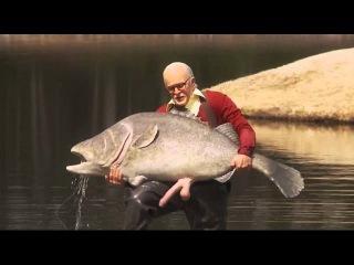 Чудная рыбалка. Ловля рыбы без снастей!!!