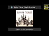 Radio Citizen - El Cielo (Featuring Bajka)