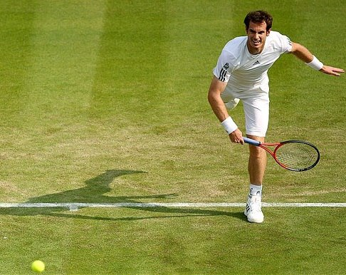 Murray on grass court