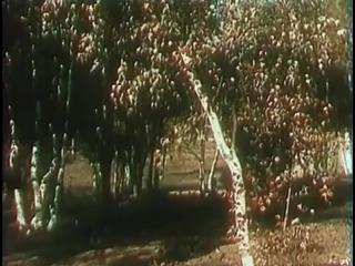 Всеми любимая сказка. Конёк - горбунок 1941