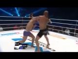 Дагестанские бойцы ММА и смешанных единоборств, UFC HL 2015