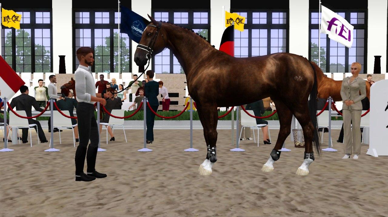 Регистрация лошадей в RHF 2 - Страница 2 G-x4Y9yVsOM
