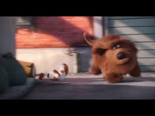 Тайная жизнь домашних животных -Второй Русский Трейлер (28.01.2016)