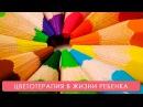 Цветотерапия для ребенка. Мамина школа. ТСВ