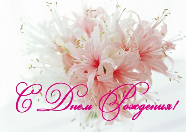 Открытка с днём рождения цветы лилии 21