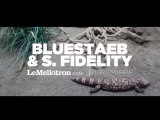 Bluestaeb &amp S. Fidelity - Fuckin Up (Official Video)  LeMellotron.com Premiere