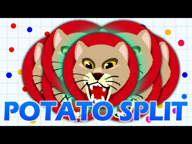 PotatoSplit, JumboSplit, FireSplit, X-Split, ExtraSplit, PopSplit, VanishSplit, CannonSplit Agario